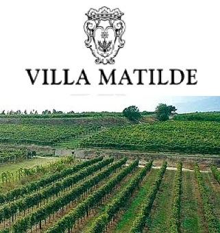 villa-matilde-veduta-vigneti-logo1