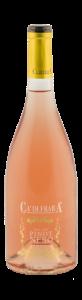 pinot-nero-rosè-2016-dop